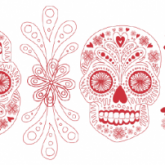 mexican sugar skull border illustration for Brighton's Big Screen